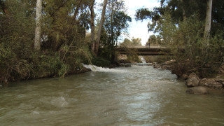 LN_017 Israel Nature and Landscape footage: Jordan River with a strong winter stream
