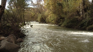 LN_018 Israel Nature and Landscape footage: Pan right to left Jordan River with a strong winter stream