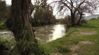 LN_021 Israel Nature and Landscape footage: Jordan River near Jordan Park