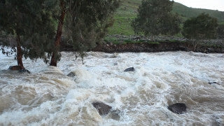 LN_034 Israel Nature and Landscape footage: Jordan River rapids in winter