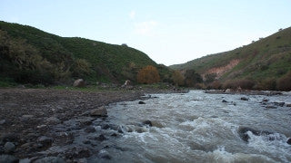 LN_035 Israel Nature and Landscape footage: low angle Jordan River rapids in winter