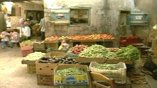 MG_053 Israel military footage: Gaza stock footage - Life in a Palestinian refugee camp in Gaza, fruit and vegetable market, 2002
