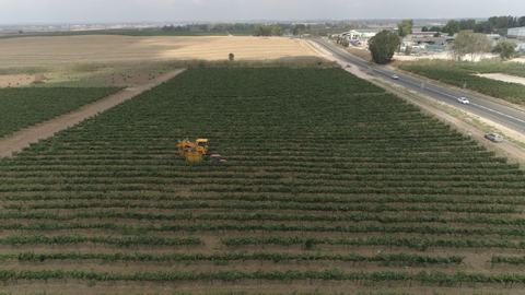 AGR_018 Stock footage of agriculture In Israel: drone aerial clip of fields after hay harvest