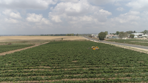 AGR_023 Agriculture In Israel: 4K video clip of hay harvest in Israel