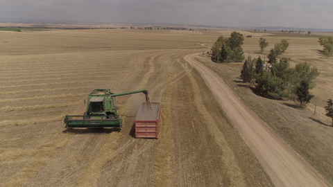 AGR_011 - Stock Footage of Israel: Combine harvest aerial offload