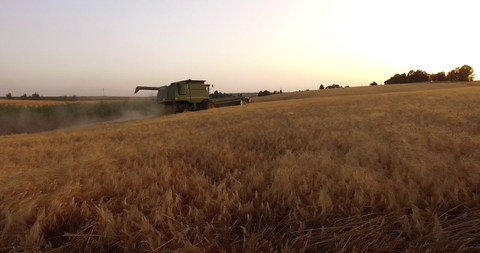 AGR_020 Agriculture In Israel: 4K video clip of hay harvest by a combine at sunset.