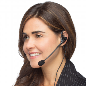 D713 Business Headset for One Ear