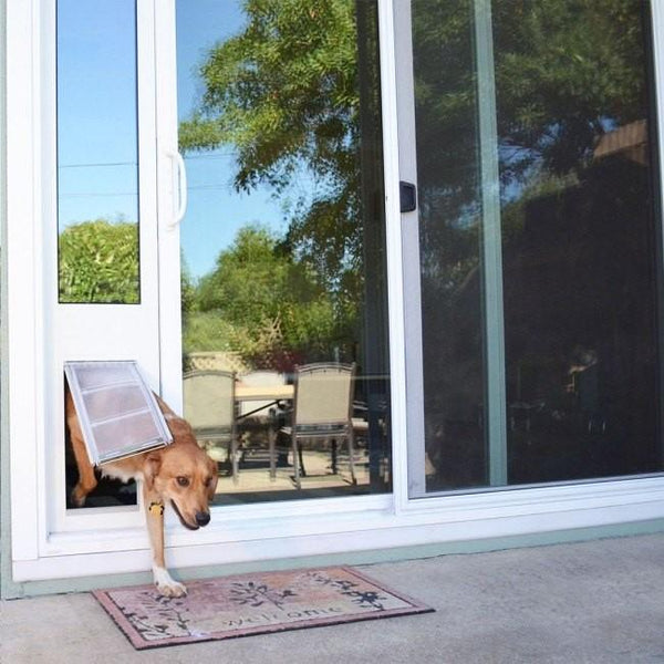 How to Install a Dog Door in a Glass Door?