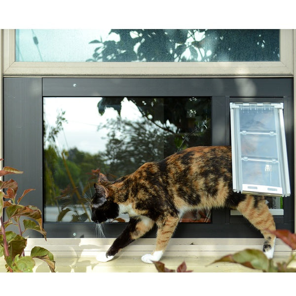 Cat Doors: Choose the Perfect One