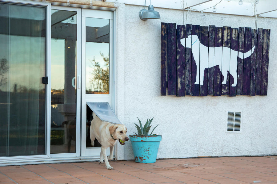 Installing a Dog Door in a Sliding Glass Door