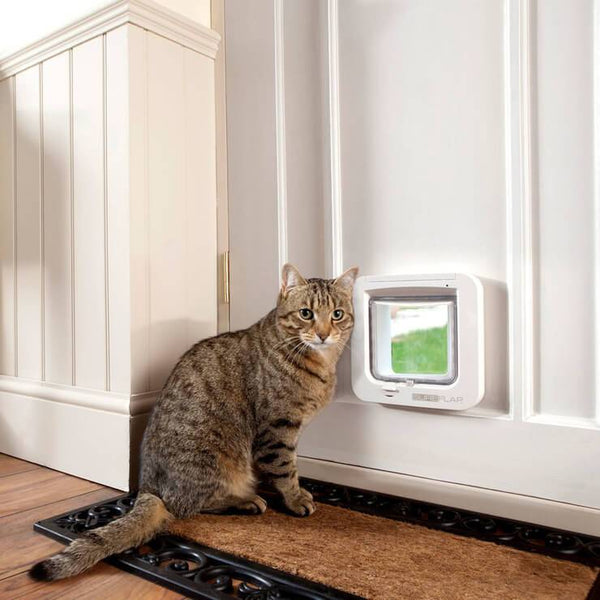 "The Top 5 Differences Between the SureFlap Microchip Door and the Cat Mate 305 ""Elite"" Cat Door"