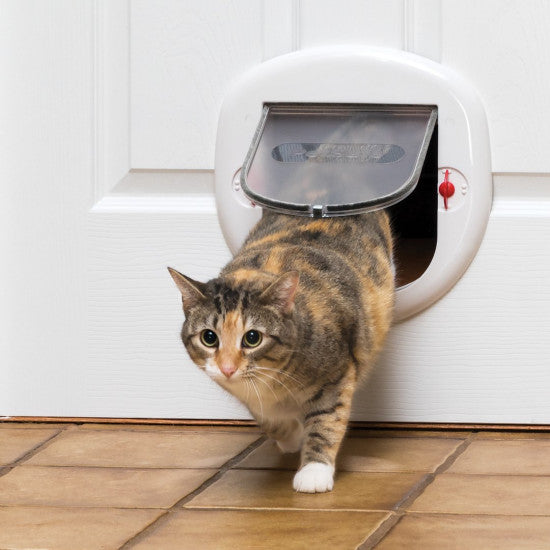 cat going through the electronic cat door