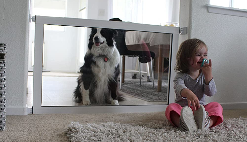 dog and baby separated by the ClearVis Baby Gate for pets