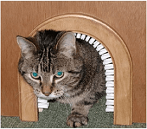 Cat Brush for Cat Hole