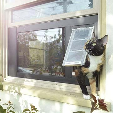A cat using the Thermo Sash 3e Cat Door for Sash Windows to go their catio