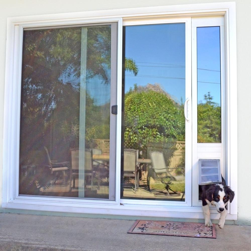 Border Collie coming through the dog door inserted in a Sliding Glass Dog door