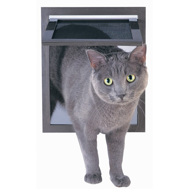 A gray cat using a screen door cat flap.
