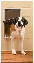 Economical PetSafe Plastic pet Door