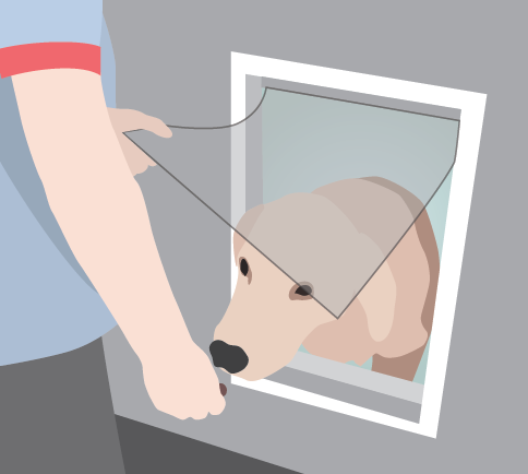 Hold the flap open to train your how how to use a hound door | Use training treats