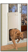High Tech's Power Doggie Door