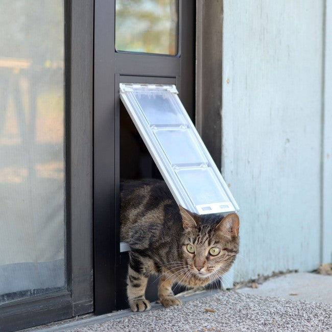 Cat going through the Endura Flap Thermo Panel 3 for sliding glass doors