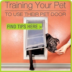 How to train your Pet to use a Doggie Door | Treat Motivated Pet Training