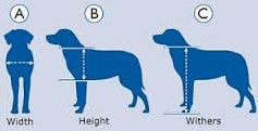 Measuring your dog for a pet door is important to selecting the correct doggy door.