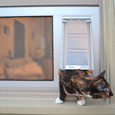 cat going through thermo sash 3e pet door