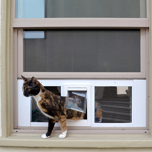 cat using ideal fast sash pet door for windows
