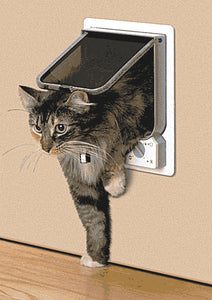 cat using cat mate 254 pet door
