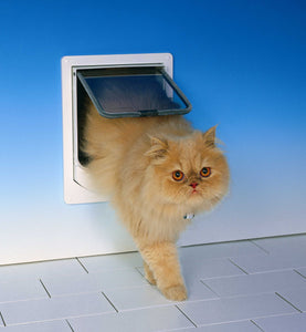 fluffy cat using cat mate 254 electronic door
