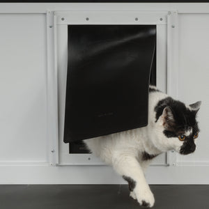 cat using pride black rubber flap