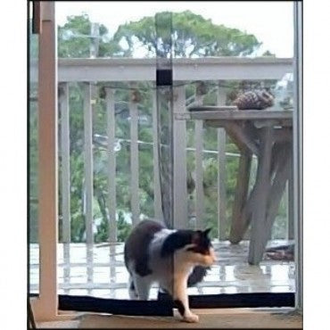 cat using bugoff instant screen door