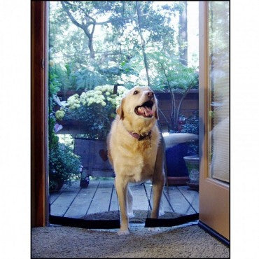 lab using bugoff instant screen door