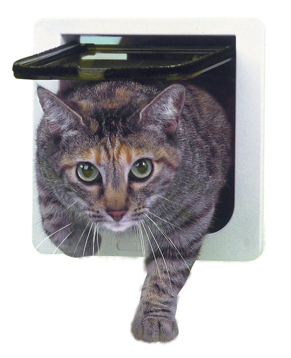 The cat flap pet door by Ideal pet products pet door with lock