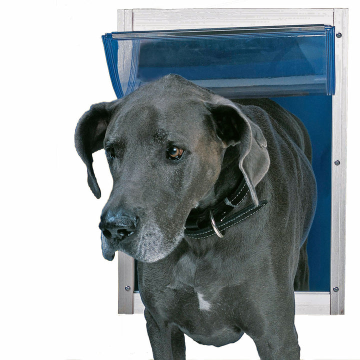 large black dog using ideal deluxe door mount