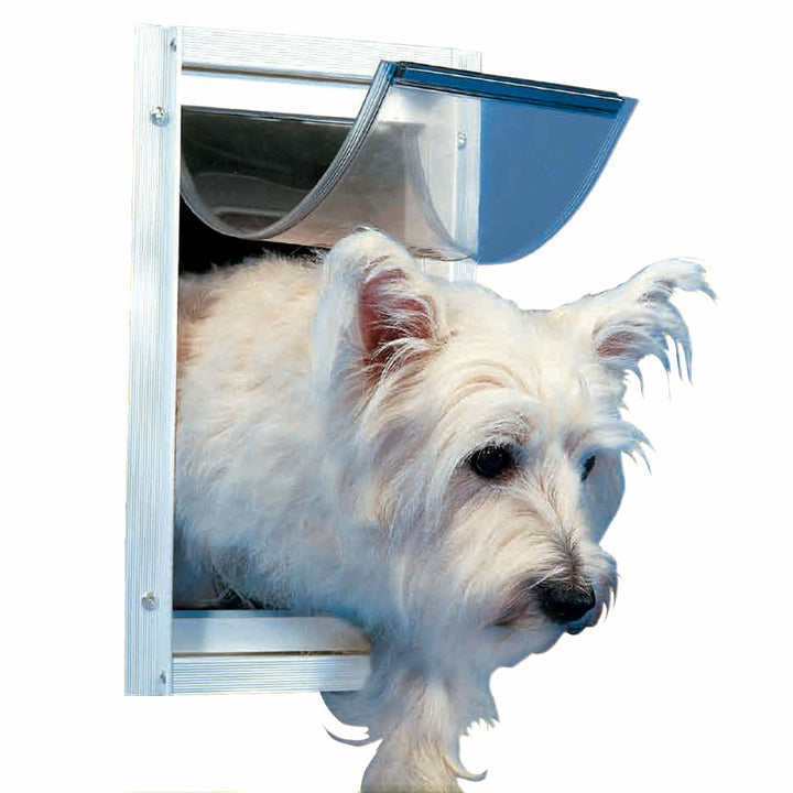 small white dog using ideal deluxe door mount