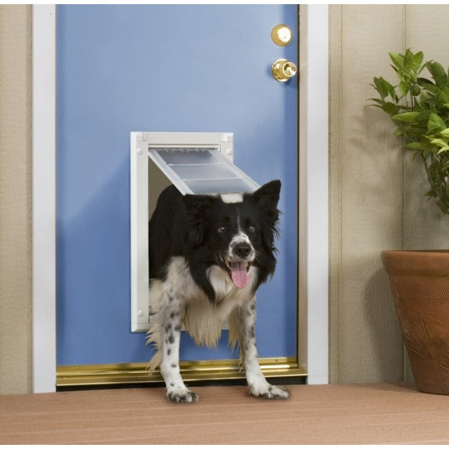 dog coming through endura flap door mount