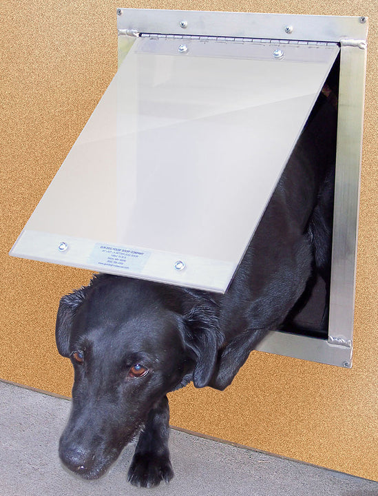 "A large dog using the Gun Dog ""Easy"" Dog Door"