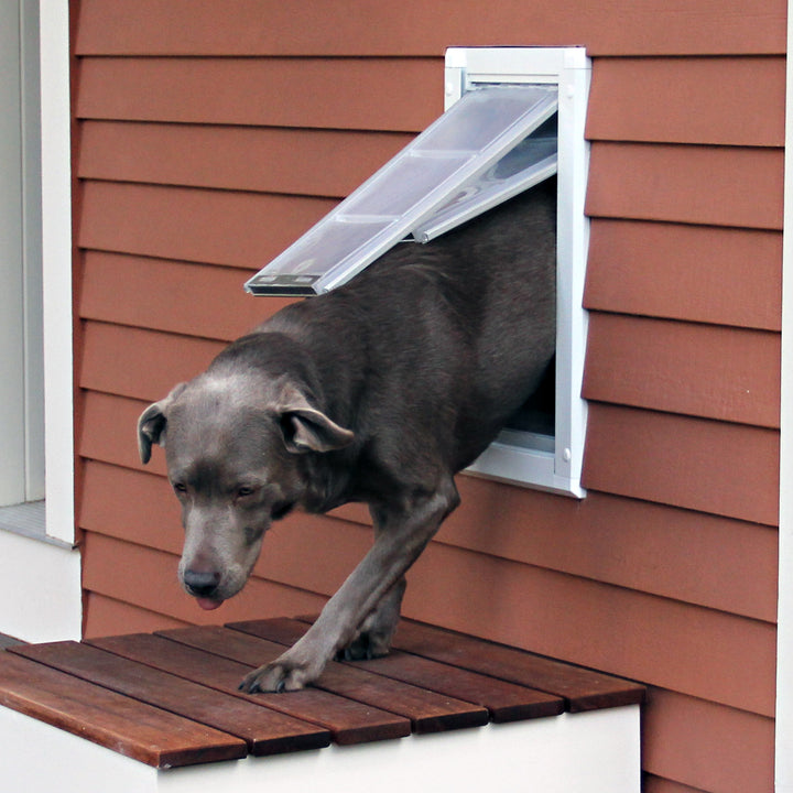 dog stepping out of wall mounted endura flap