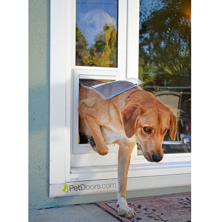 dog using ideal fast fit pet door