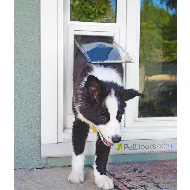 Mikey using the custom ideal fast fit sliding glass doggie door
