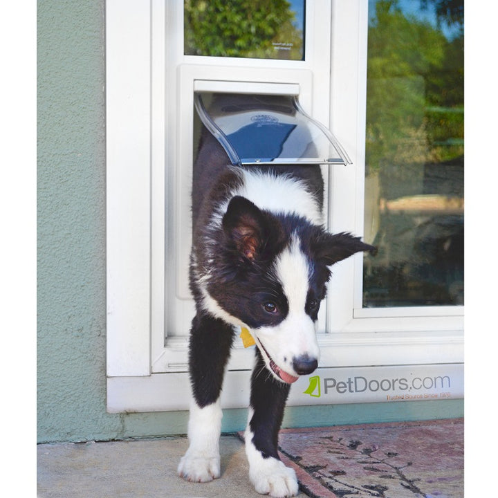 border collie puppy using ideal fast fit pet door