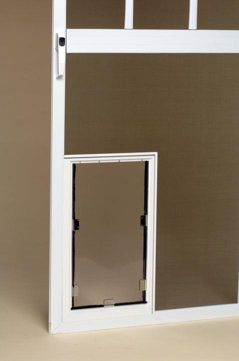 White Hale cat installed in screen door