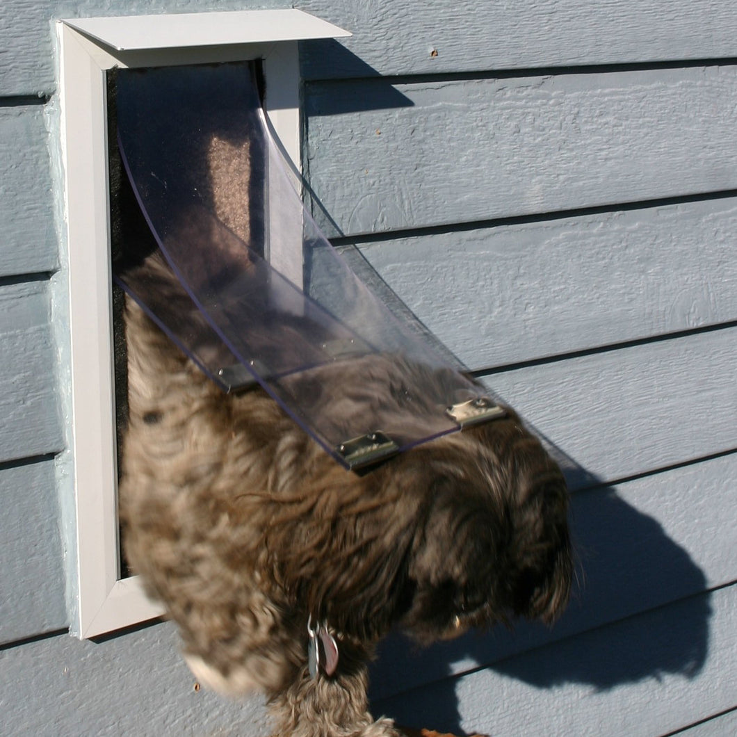 A small dog leaving a house through a Hale Pet Door that has the Pet Door awning in white installed.