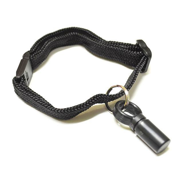 "The Ideal ""E"" Cat collar key, which is a black fob attached to a black thread lanyard."
