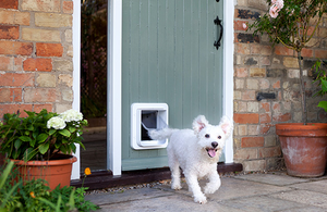 Small dogs can also use the Sure Petcare Sureflap Microchip Pet Door