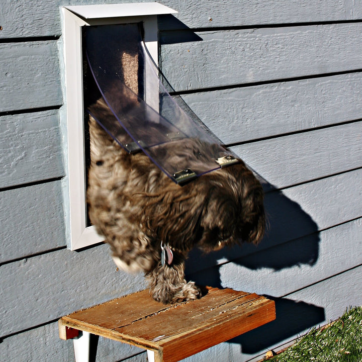 A small dog leaving a house through the Hale Pet Door, which had been installed into a wall