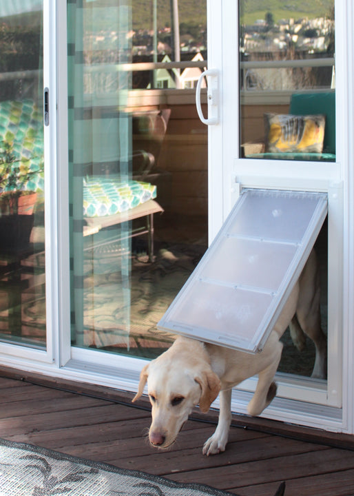 A dog using the Endura Flap Severe Weather Vinyl Sliding Glass Dog Door, which has a flexible flap that does not warp