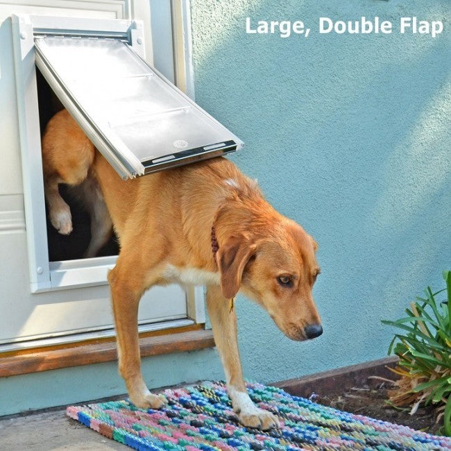 dog using endura flap pet door for doors